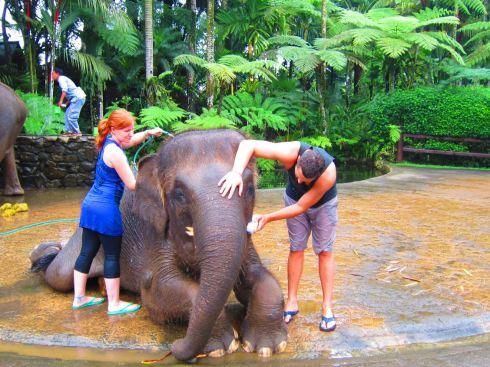 Brianna and I bathing an elephant